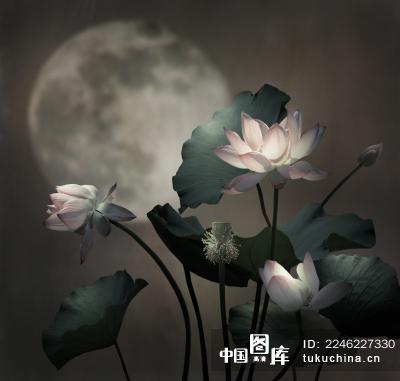 花好月圆夜