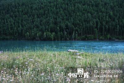 中国新疆喀纳斯风景区风光
